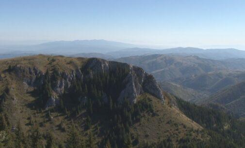U Srbiji se 11.aprila obeležava Dan zaštite prirode