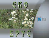 EkoBrus – za čistiju Rasinu i jezero Ćelije (emisija br.5)