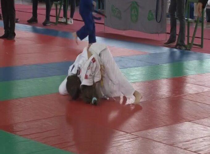 Školsko prvenstvo Centralne Srbije u džudou 20. i 21. aprila
