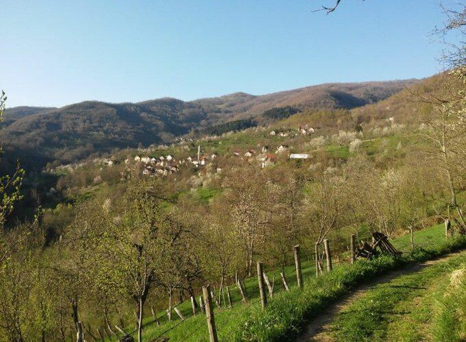 Brusko selo – zalog za budućnost 27: Potencijali organske poljoprivrede